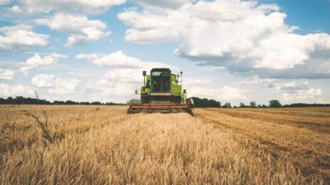 crop performance